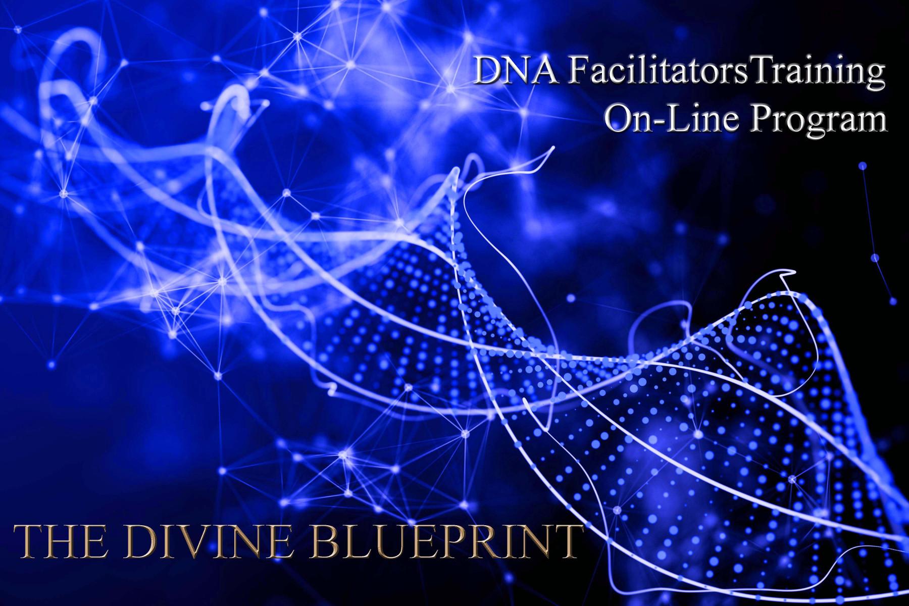 Patricia Cori Courses The Divine Blueprint